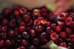 ikukids-confiture-cerise-ete-fruits-rouge-recette
