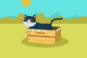 ikukids-concepts-spatiaux-smile-and-learn-chester-chat-lieu-maternelle