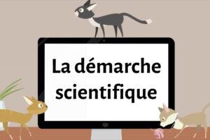 ikukids-demarche-scientifique-recherche-chercheur-hypothese-questionnement